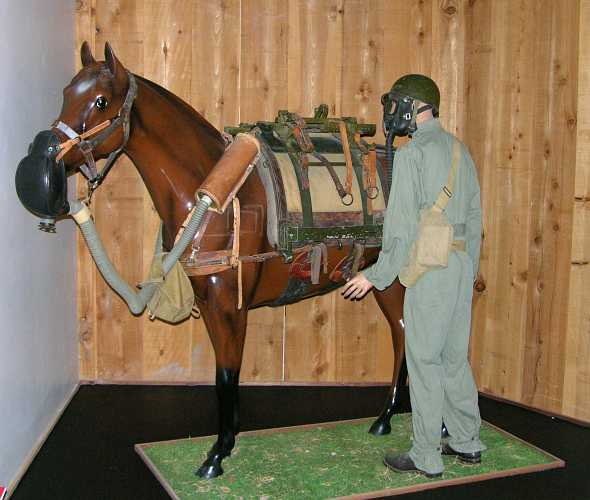 M5 Horse Gas Mask