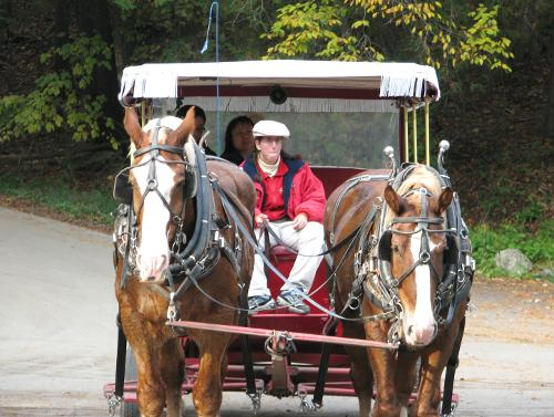 Mackinac Island Carriage Tours - Mackinac Island, Michigan