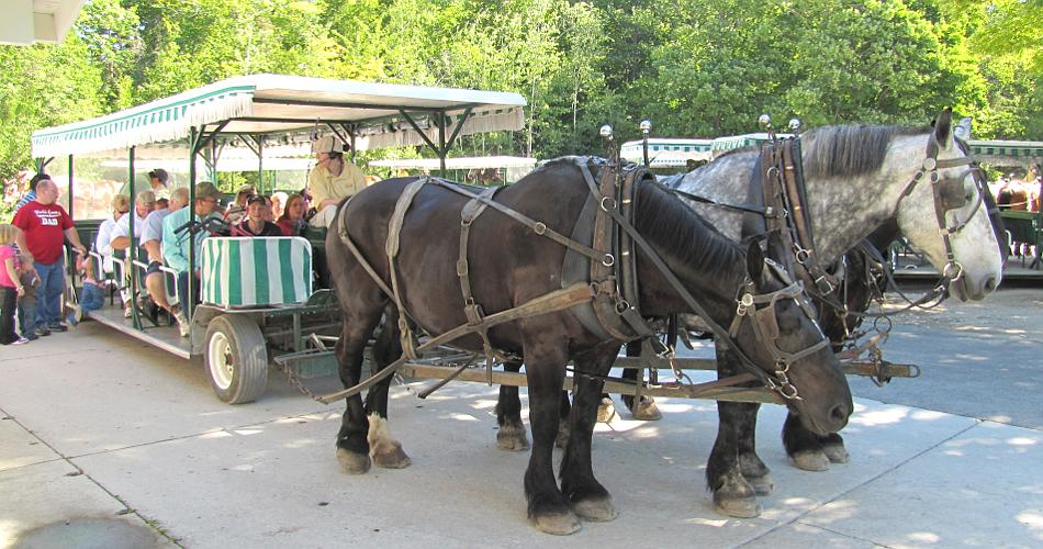 Three hitch carriage - Mackinac Island Carriage Tour