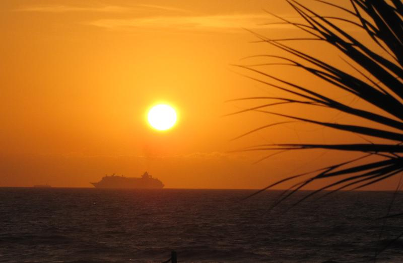 Cruise ship and plam tree ocean sunrise