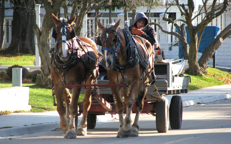 Hauling freight with horse and wagon on Mackinac Island